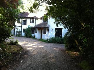 Beautiful Bed and Breakfast with Deck and Satellite Or Cable TV - Hindhead vacation rentals