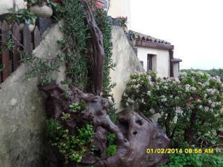Agriturismo Ruvitello per una vacanza tutta natura - Catania vacation rentals