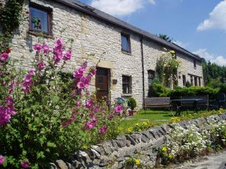2 bedroom Cottage with Internet Access in Millers Dale - Millers Dale vacation rentals