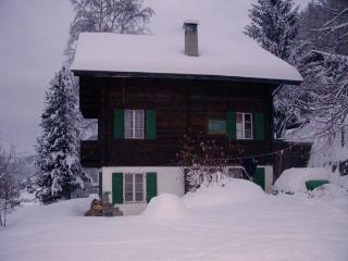 Sunny Chalet with Internet Access and Washing Machine - Ayer vacation rentals