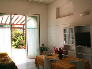Pergola Delightful Holiday Home On The Ground Floor - Lucca vacation rentals