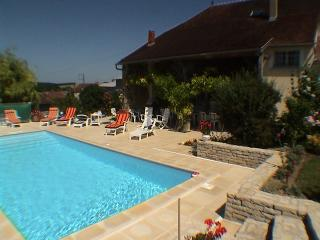 Le Clos du Trait, Roffey near Chablis, Burgundy - Tonnerre vacation rentals