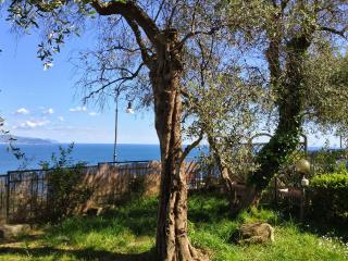 Andromeda 1stFL,Breathtaking view on Tigullio gulf - Rapallo vacation rentals