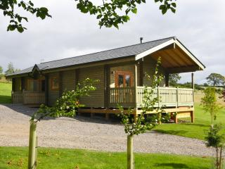 Beautiful 2 bedroom Hudswell Cabin with Internet Access - Hudswell vacation rentals
