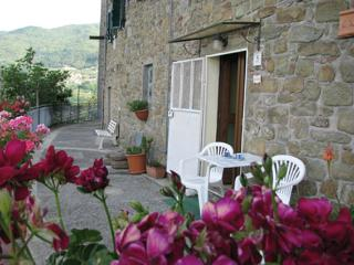 Cozy 2 bedroom San Quirico di Sorano Condo with Internet Access - San Quirico di Sorano vacation rentals