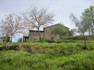 Casa marcella rustic 3 bedroom farmhouse, views. - Cortona vacation rentals