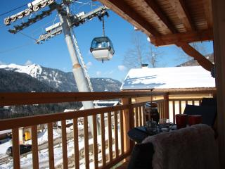Bright 3 bedroom Morzine-Avoriaz Condo with Central Heating - Morzine-Avoriaz vacation rentals
