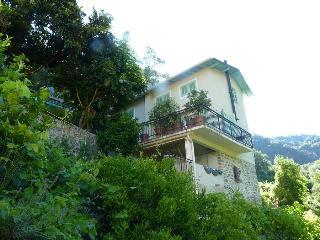 Renovated Villa near Ventimiglia Ligurie with pool - Ventimiglia vacation rentals
