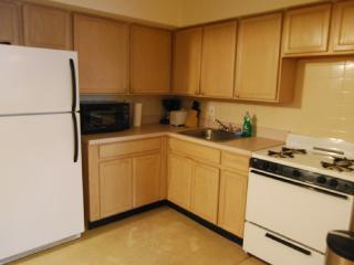 Unit #8609 - Manhattan vacation rentals
