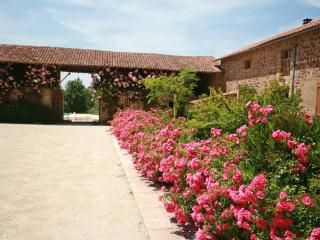 5 bedroom Farmhouse Barn with Internet Access in Availles-Limouzine - Availles-Limouzine vacation rentals