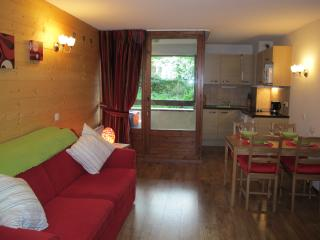 Luxurious Studio Ski Apartment - Brides-les-Bains vacation rentals