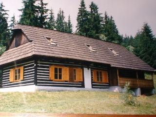 3 bedroom Cottage with Television in Telgart - Telgart vacation rentals
