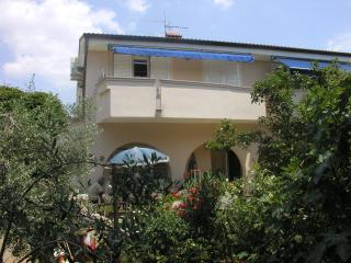 Apartment Dida - Island Pag - Mandre, 50m from sea - Mandre vacation rentals