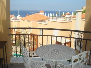 Nice Condo with Internet Access and Washing Machine - Playa de Fanabe vacation rentals