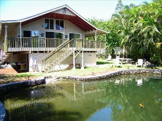 Private 1500 Sqr Ft. Swimming Pond In  Back Yard - Puna District vacation rentals