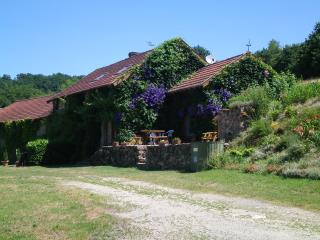 Perfect 4 bedroom Gite in Eymoutiers - Eymoutiers vacation rentals