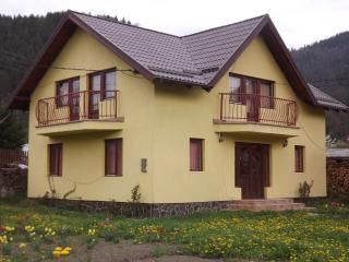 Perfect Guest house with Internet Access and Television - Borsec vacation rentals