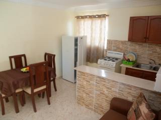 One-Bedroom Apartment - Sleeps 4 - Santo Domingo vacation rentals