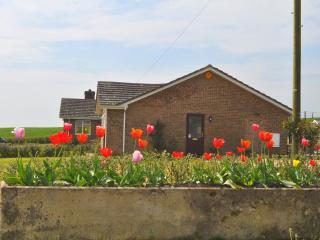 Brynmor Acres - Cerne Abbas, Dorset - Cerne Abbas vacation rentals