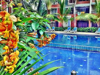 Awesome apartment  4 to 6 people - Candolim vacation rentals