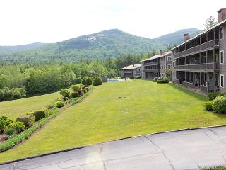 Book Now! Tranquil 2BR New Hampshire Condo in the White Mountains *Recently Added Wifi!* - North Conway vacation rentals