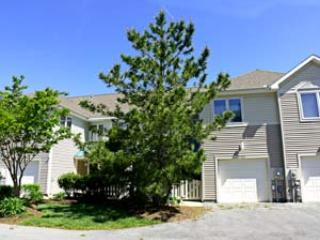 55011 Pineview Road - Image 1 - Bethany Beach - rentals