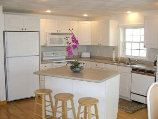 Cher Ami: Gleaming and immaculate condo just 0.3 mi to Cressy's Beach - Gloucester vacation rentals