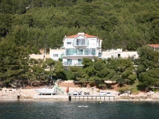 Cozy 3 bedroom Vela Luka Villa with Internet Access - Vela Luka vacation rentals