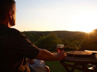 Vine Cottage - Chepstow vacation rentals