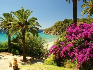 Beautiful villa close to beach amazing sea views - Le Rayol-Canadel vacation rentals