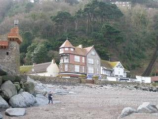 Beautiful House with Internet Access and Television - Lynmouth vacation rentals