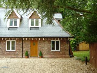 """Ducklings"", Forest hideaway - Brockenhurst vacation rentals"