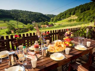 Perfect Farmhouse Barn with Television and Grill - Prekmurje Region vacation rentals