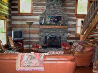 Amazing Gaze_Private_Fireplace_WiFi_Long Range Views - Todd vacation rentals