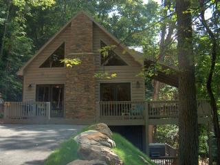 Indian Cove-Private_Hot Tub_Pet Friendly_Gameroom_Views - Blue Ridge Mountains vacation rentals