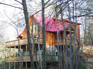 Comfortable 4 bedroom Lansing Cabin with Deck - Lansing vacation rentals