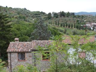 Charming 4 bedroom Farmhouse Barn in Nievole - Nievole vacation rentals