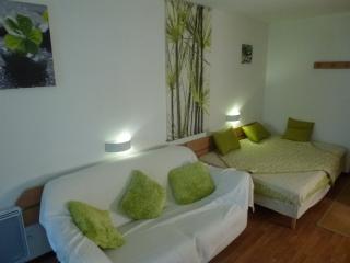 1 bedroom Condo with Internet Access in Brides-les-Bains - Brides-les-Bains vacation rentals