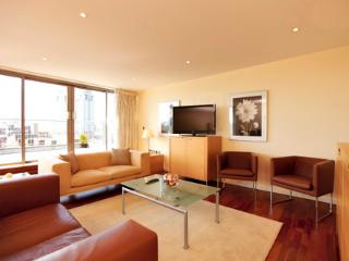 The Waterloo 2 Bedroom 2 Bathroom Penthouse - London vacation rentals