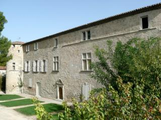 Beautiful 6 bedroom Castle in Clermont L'herault with Internet Access - Clermont L'herault vacation rentals