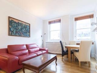 Stunning 2Bedroom Apartment in Victoria - London vacation rentals