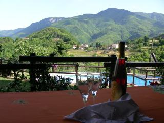 Lovely House with Internet Access and Outdoor Dining Area - Molazzana vacation rentals