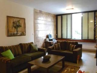 Centrally located near hotels with all amenities - Jerusalem vacation rentals