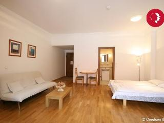 Cosy Studio Apartment on Town Hall Square - Tallinn vacation rentals
