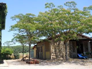 IL NIDO at I MORI GELSI - Torgiano vacation rentals