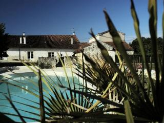 Nice 3 bedroom Vacation Rental in Asnieres-la-Giraud - Asnieres-la-Giraud vacation rentals
