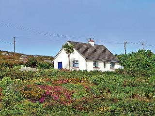 Beautiful 2 bedroom Cottage in Carna - Carna vacation rentals