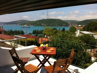 Bophorus View Terrace & Private Garden 4 BR 2BT - Istanbul vacation rentals