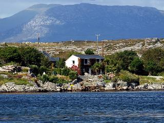 Beautiful Cottage with Internet Access and Central Heating - Cashel vacation rentals
