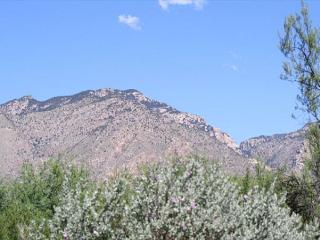 First Floor 2 Bedroom with Great Mountain Views! - Tucson vacation rentals